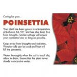 POINSETTIA CARE CARD 60-00255